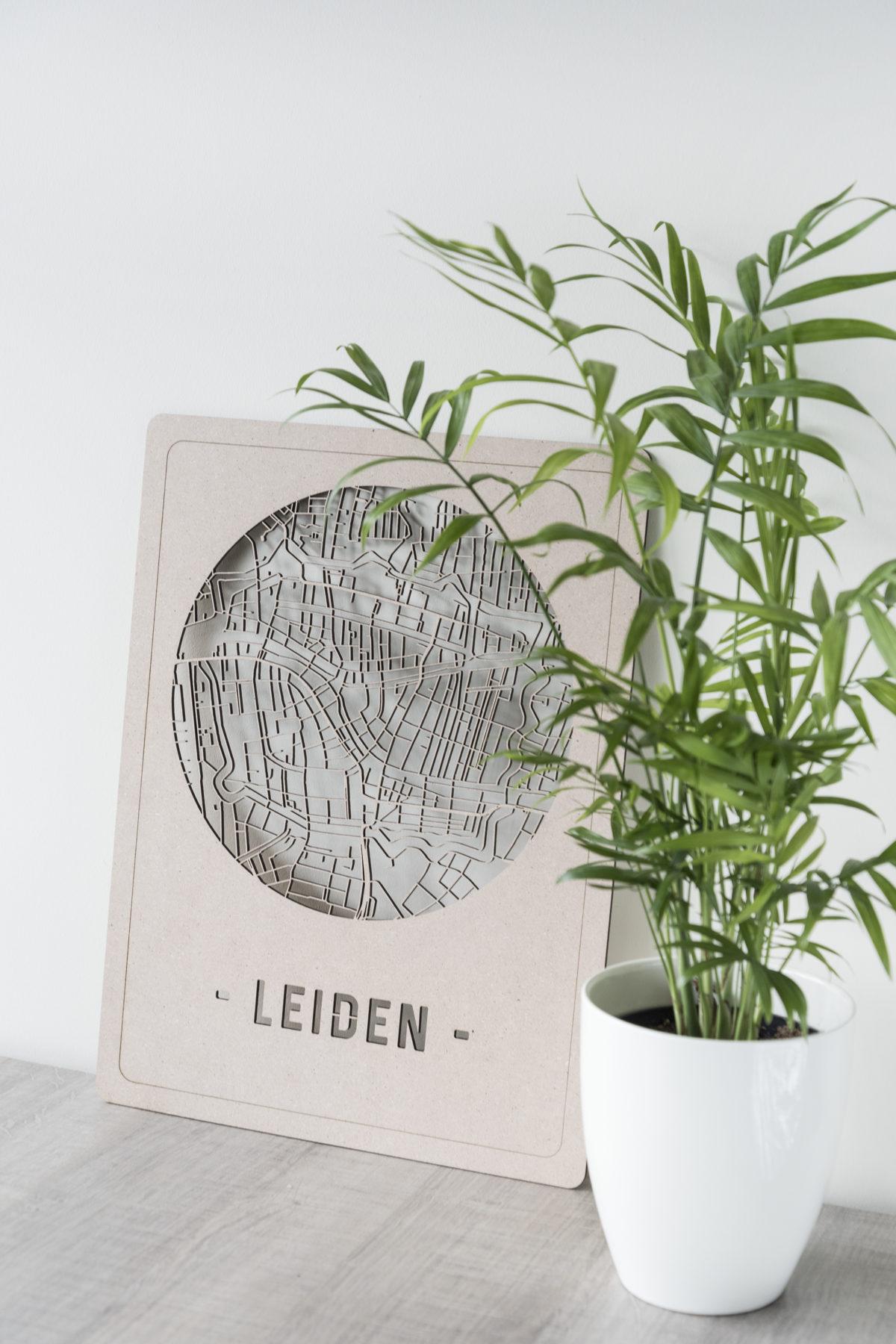 Stadskaart Leiden hout